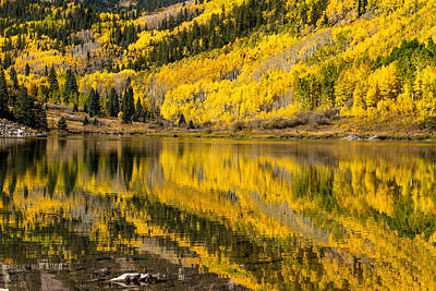 Autumn Lake Reflections Poster by Teri Virbickis
