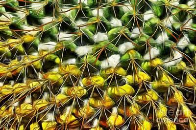 Cactus Plant Poster by George Atsametakis