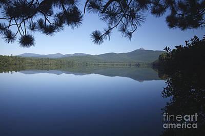 Chocorua Lake - Tamworth New Hampshire Poster by Erin Paul Donovan