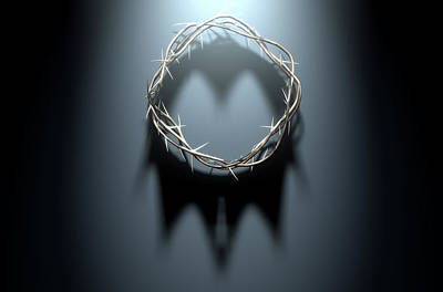 Crown Of Thorns With Royal Shadow Poster by Allan Swart