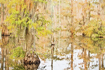 Cypress Swamp Poster by Scott Pellegrin