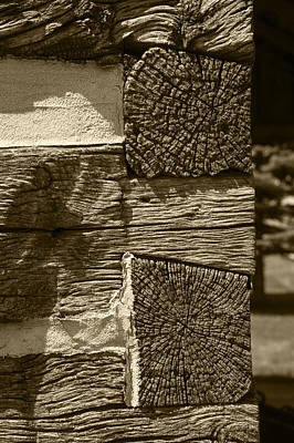 Dovetail Log Structure Poster by Donald  Erickson