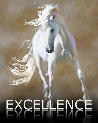 Excellence Poster by Barbara Hymer