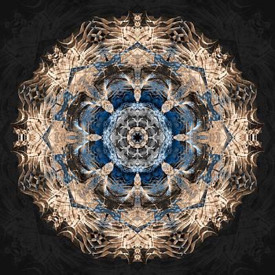 Flower Mandala Poster by Filippo B