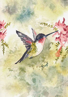 Hummingbird Poster by Sam Sidders