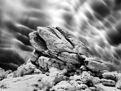 Joshua Tree Rocks Poster by Dominic Piperata