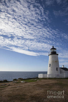 Pemaquid Lighthouse Poster by Timothy Johnson