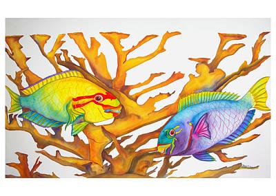 Queen Parrotfish And Elkhorn Coral Poster by Brenda Tucker