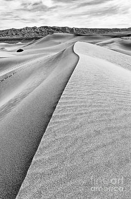 Sand Dune Ridge In Death Valley National Park Poster by Jamie Pham
