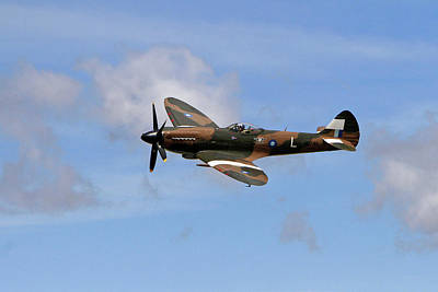 Spitfire Poster by Shoal Hollingsworth