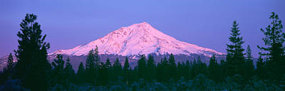 Sunrise At Mount Shasta, California Poster by Panoramic Images