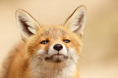 That Foxy Face Poster by Roeselien Raimond