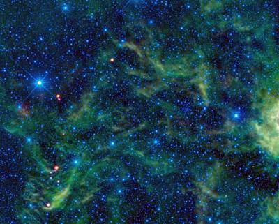 The Star Cluster Ngc 2259  Poster by American School