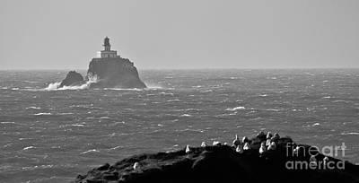 Tillamook Rock Lighthouse Poster by Nick  Boren