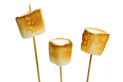 Toasted Marshmallows Poster by Elena Elisseeva