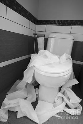 Toilet Paper Strewn In A Bathroom Poster by Marlene Ford