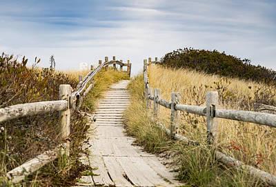 Walkpath To The Beach Poster by Enrico Della Pietra