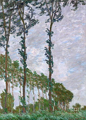 Wind Effect - Series Of The Poplars Poster by Claude Monet