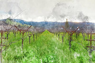 Wine Vineyard In Spring Poster by Brandon Bourdages