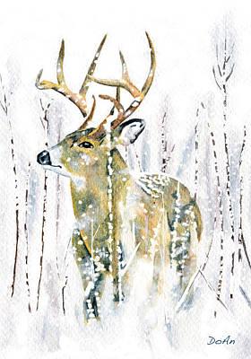 Winter Deer Poster by Antony Galbraith