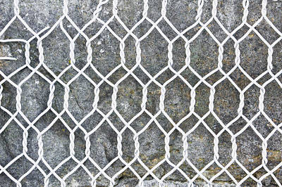 Wire Mesh Poster by Tom Gowanlock