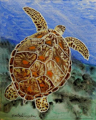 Sea Turtle Poster by W Gilroy