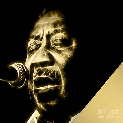 Muddy Waters Collection Poster by Marvin Blaine