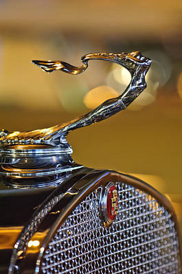 1930 Cadillac Roadster Hood Ornament Poster by Jill Reger