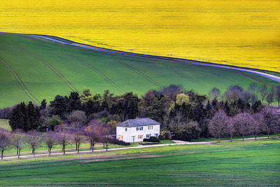 Berkshire - England Poster by Joana Kruse