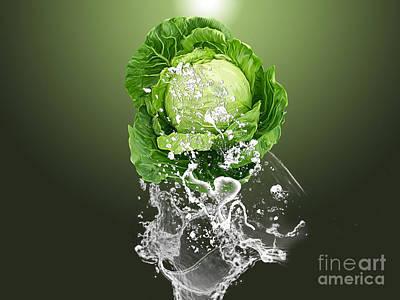 Cabbage Splash Poster by Marvin Blaine