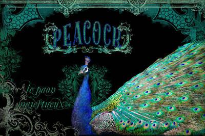 Elegant Peacock W Vintage Scrolls  Poster by Audrey Jeanne Roberts