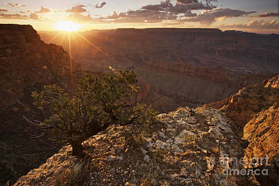 Grand Canyon, West Of Lipan Point Poster by Terry Moore