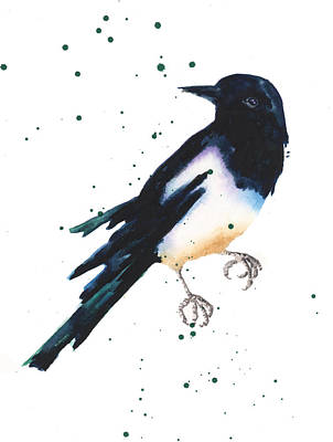 Magpie Painting Poster by Alison Fennell