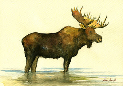 Moose Watercolor Painting. Poster by Juan  Bosco