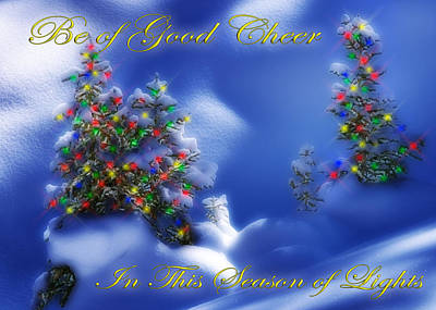 Outdoor Christmas Trees Poster by Utah Images