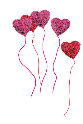 Pink Roses In Heart Shape Balloons  Poster by Michael Ledray