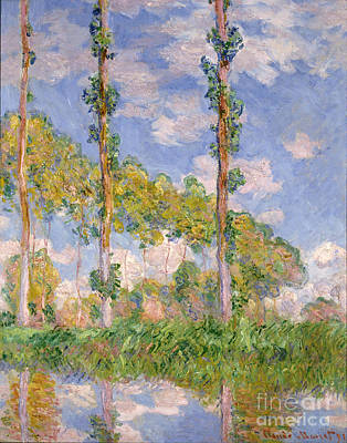 Poplars In The Sun Poster by Claude Monet
