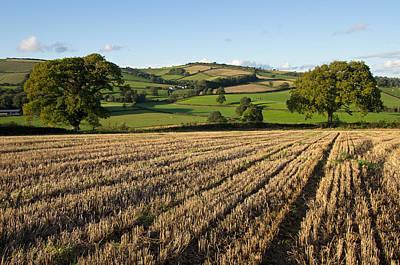 Rural Mid Devon Poster by Pete Hemington