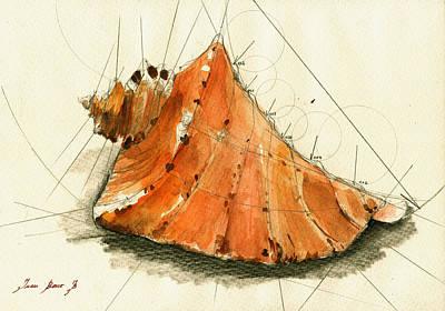 Seashell Art Painting Poster by Juan  Bosco