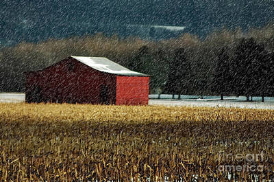 Snowy Red Barn In Winter Poster by Lois Bryan