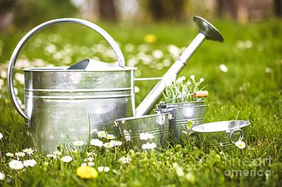 Spring Garden Poster by Mythja Photography