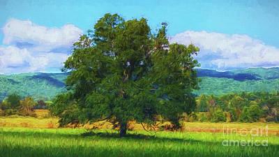 The Tree # 2 Poster by Geraldine DeBoer