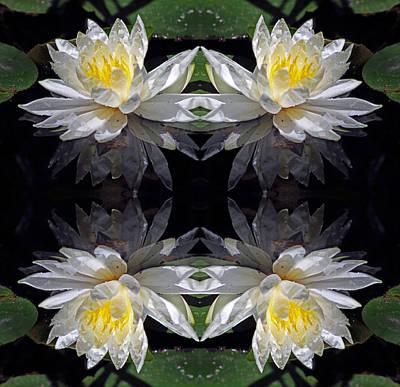 White Lotus Mandala Poster by Daniel Unfried