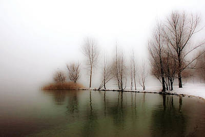 Winter Trees Poster by Joana Kruse