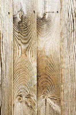 Fence Panels Poster by Tom Gowanlock