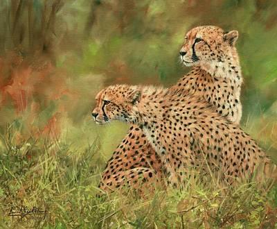 Cheetahs Poster by David Stribbling