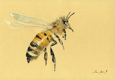 Honey Bee Watercolor Painting Poster by Juan  Bosco