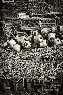 Lobster Traps Poster by Elena Elisseeva