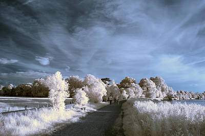 Stunning Beautiful Unique Infra Red Landscape With False Color  Poster by Matthew Gibson