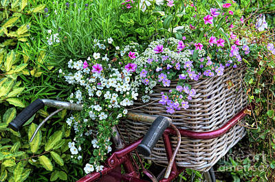 A Basket Of Flowers Poster by Tim Gainey
